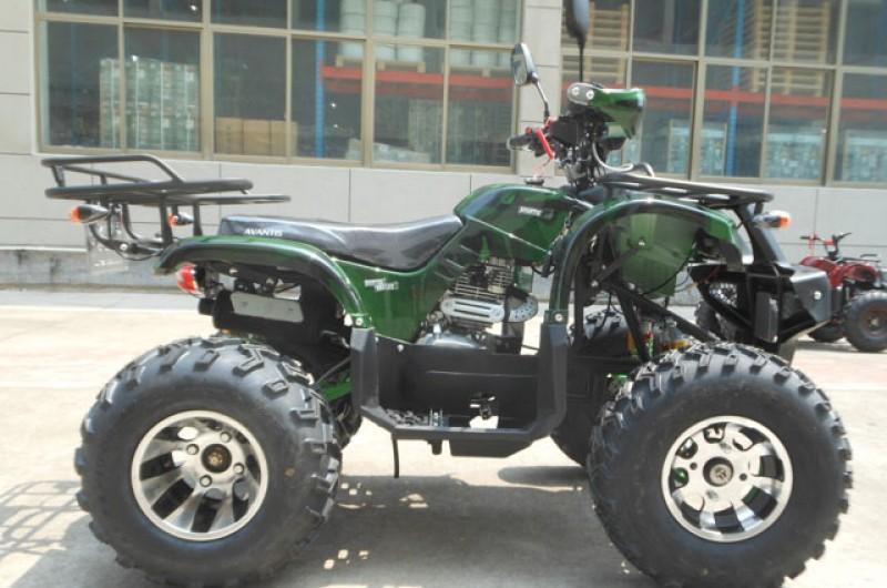 Avantis Hunter 250 Lux 5
