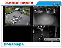 live-cam31